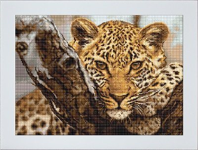 Luca-S Borduurpakket Zweigart Aida Leopard Luipaard