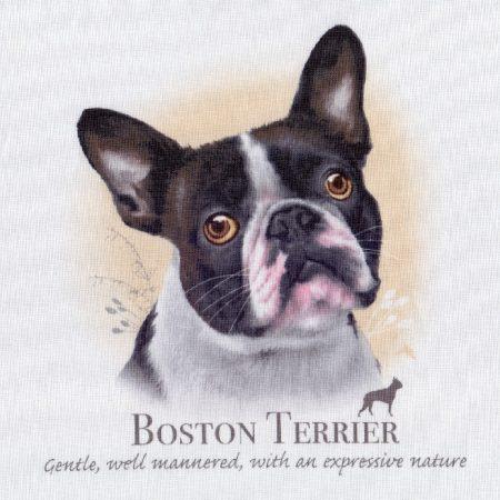 Prachtig paneltje van een hond van een Boston Terriër. Afm.: 20 x 20 cm