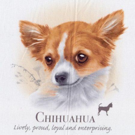Prachtig paneltje van een hond van een Chihuahua. Afm.: 20 x 20 cm
