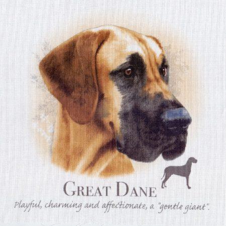 Prachtig paneltje van een hond van een Deense Dog