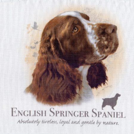 Prachtig paneltje van een hond van een Engelse Springer Spaniel