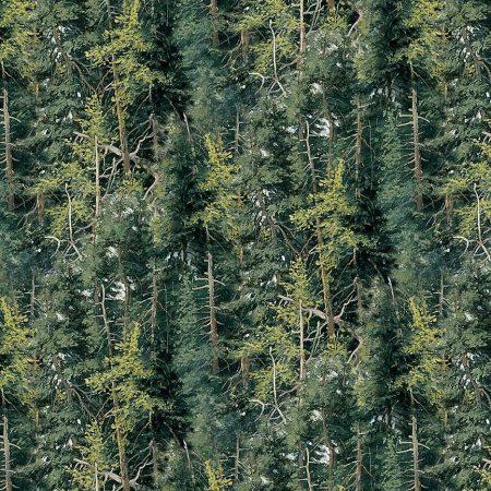 Quiltstof. Katoen. Northcott. Serie: Naturescapes. Onderwerp: Dennenbos