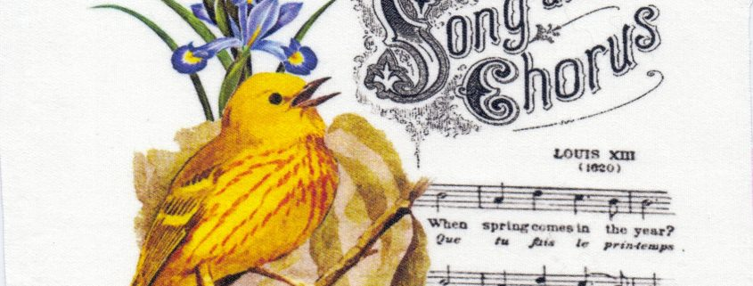 Quiltblok Beautiful Song and Chorus. Geprinte afbeelding op katoen