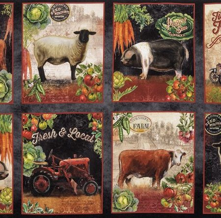 Quiltstof katoen Panel Robert Kaufman Down on the Farm 17185-163