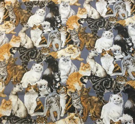 Quiltstof katoen Katten 6600-101. Merk: Stoffabrics.Serie: Cats Corner.