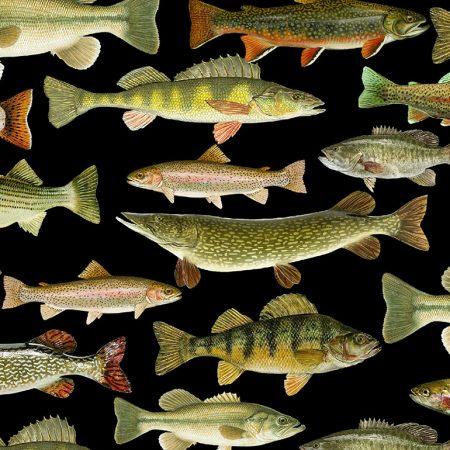 Quiltstof. Katoen. Timeless Treasures. Serie: Nature. Onderwerp: Vissen