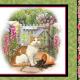 Quiltstof katoen fat quarter paneltje Fancy Felines Rood/wit 27035