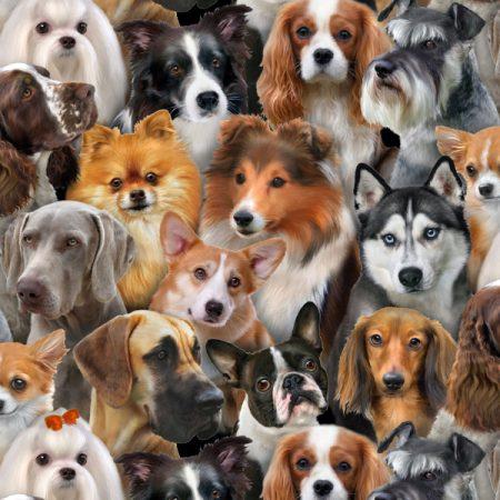 Quiltstof katoen Dog Breeds honden. Verkoop per 25 cm