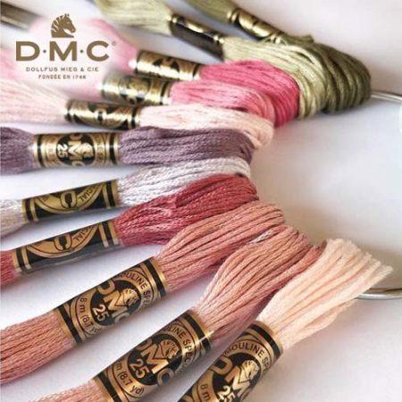 DMC Mouliné Special 117