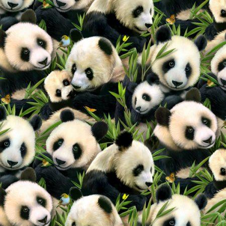 Quiltstof katoen Panda Bears allover 1230